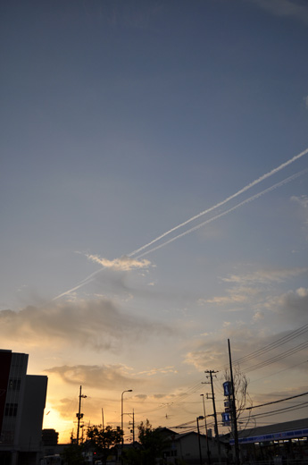 DSC_0126-20140525.jpg