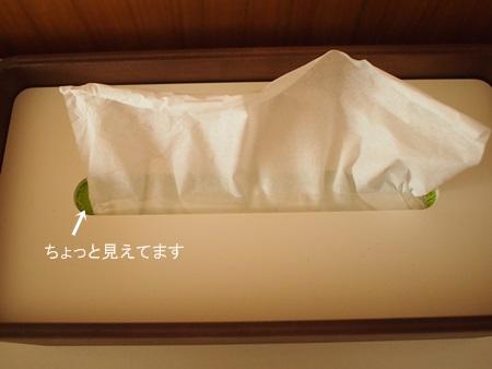 ティッシュケース (3)