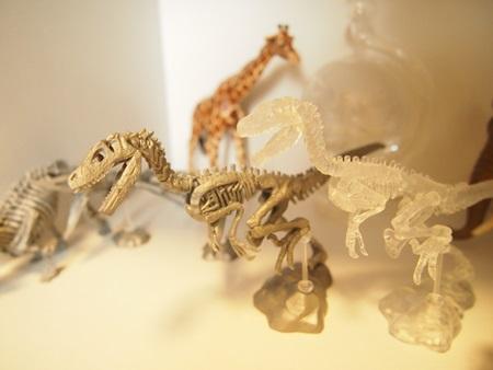 恐竜 (8)