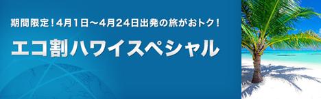 ANAは、ハワイ往復 総額約88,000円(燃油サーチャージ込み)の「エコ割ハワイスペシャル」を発売!