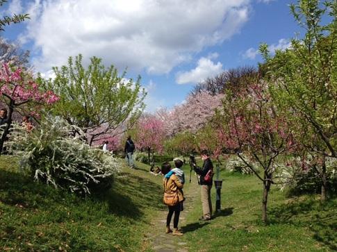 藤田邸跡公園2