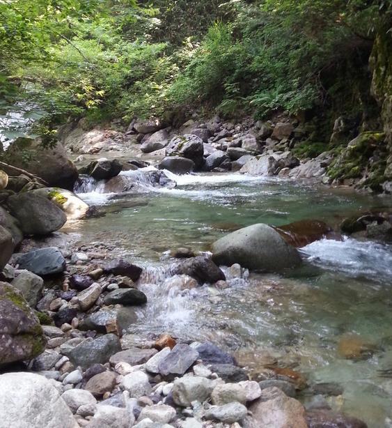 北海道の渓流行ってきたwwwww