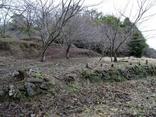3日野江城 (1200x900)