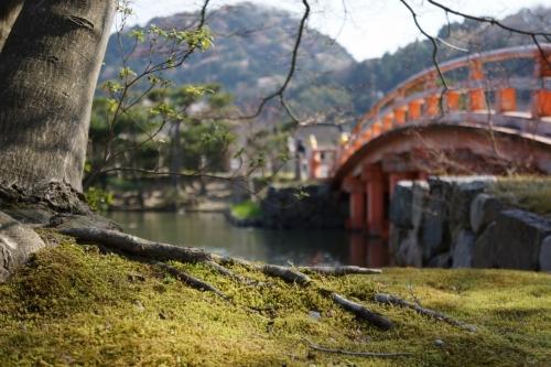 6白水阿弥陀堂 (1200x800)