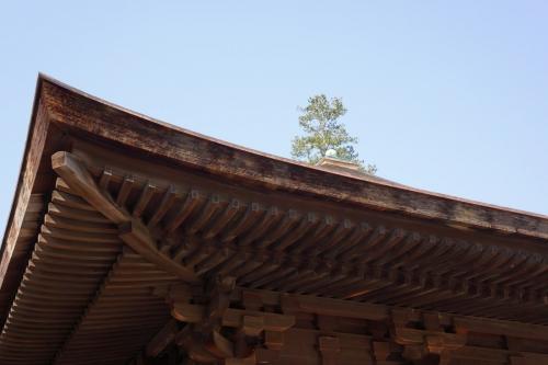 3白水阿弥陀堂 (1200x800)