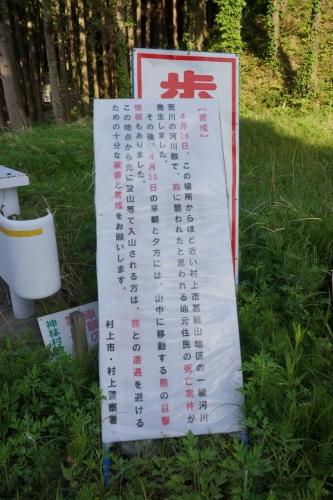 2平林熊 (800x1200)