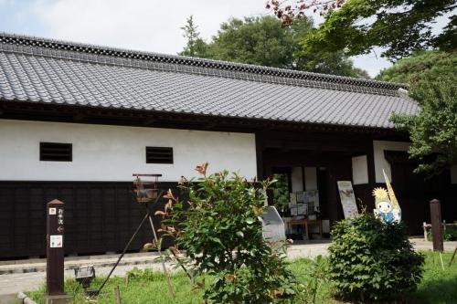 4べにばな (1200x800)