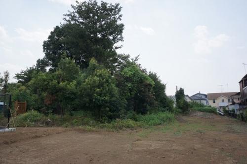 3加納城 (1200x800)
