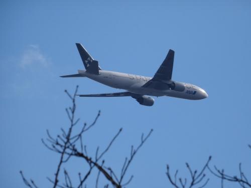 11飛行機 (1200x900)