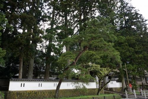 1歓喜寺 (1200x800)