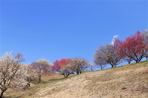 20140330_12.jpg