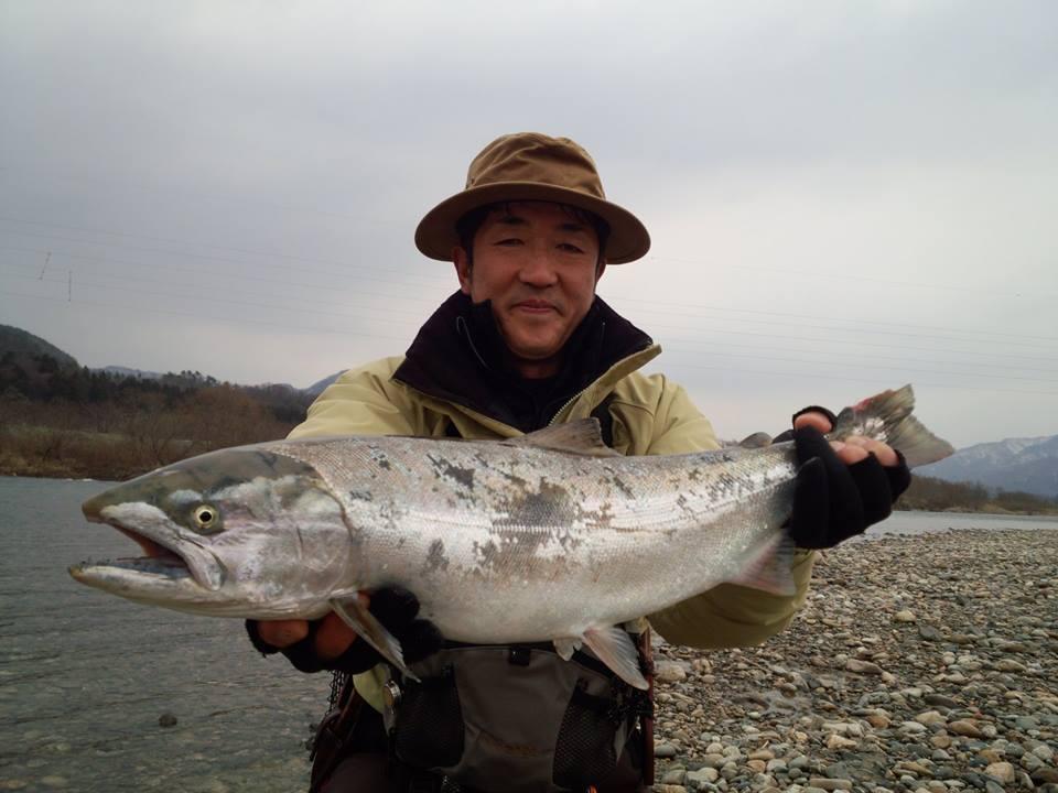 2014荒川サクラマス釣り 解禁