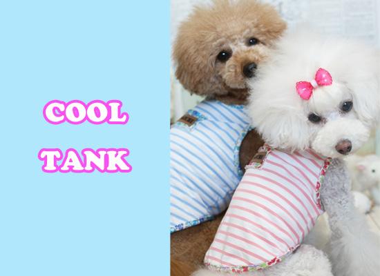 cooltank13.jpg