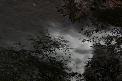 _31A2954.jpg