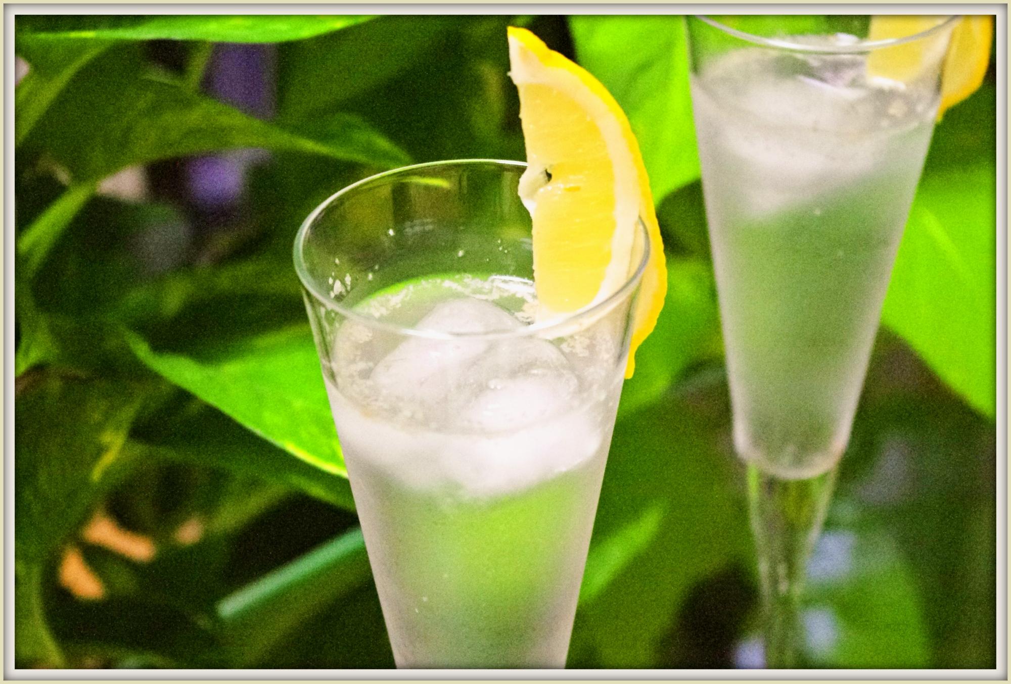 塩レモンでジンジャーエール2