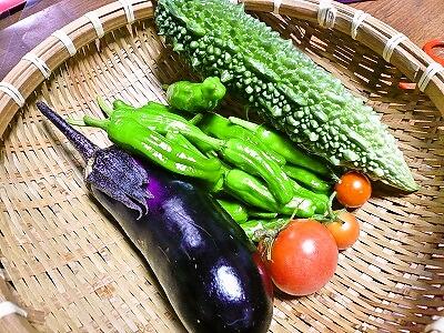 foodpic5089575.jpg