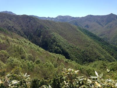 笠岳山開き3