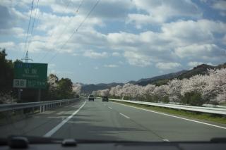 松坂に入ります