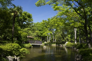 日本庭園も平常営業