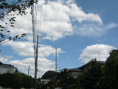 siroikumo9gatu.jpg