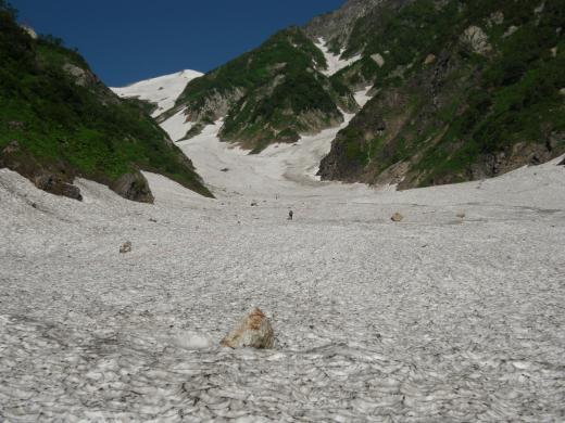 本日の大雪渓