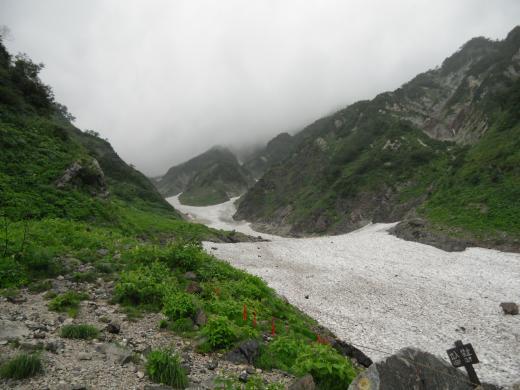8.26 本日の大雪渓