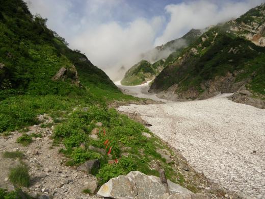 8.27 本日の大雪渓