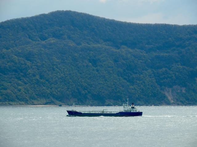 N4107佐柳島を望む