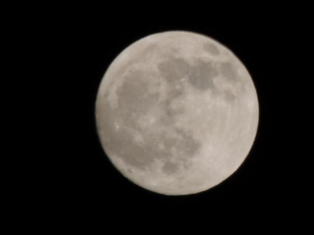 N4121満月