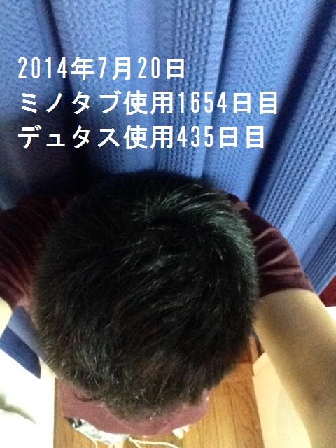 写真 2 (4)