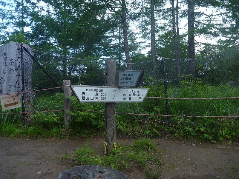 140712櫛形山 (32)