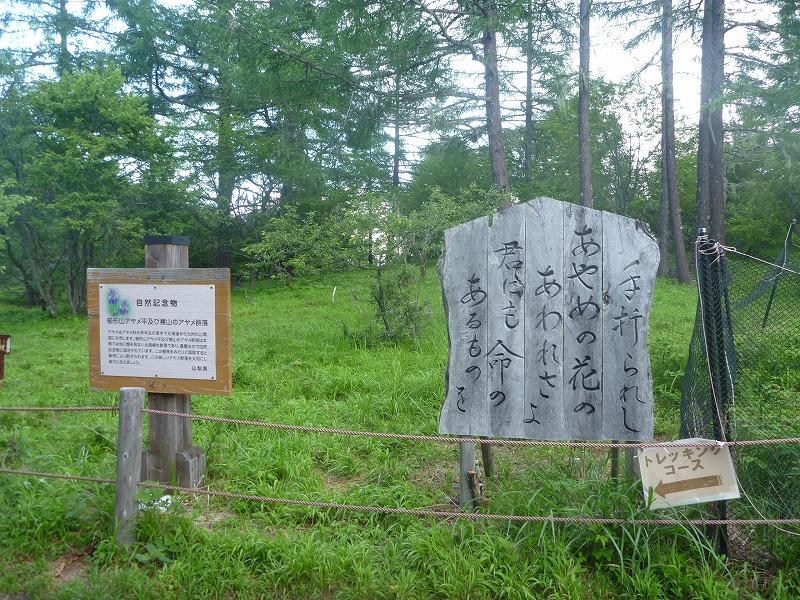 140712櫛形山 (33)
