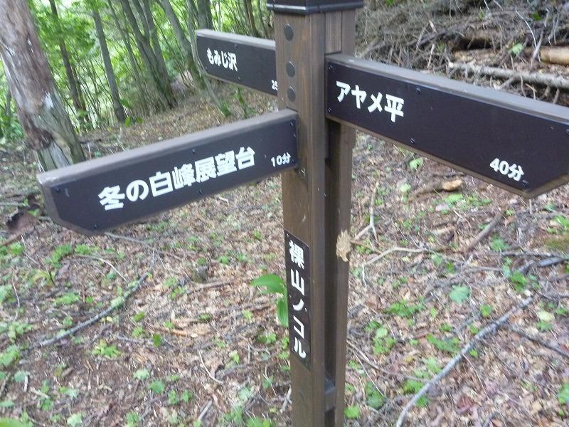 140712櫛形山 (56)