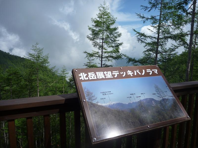 140712櫛形山 (62)