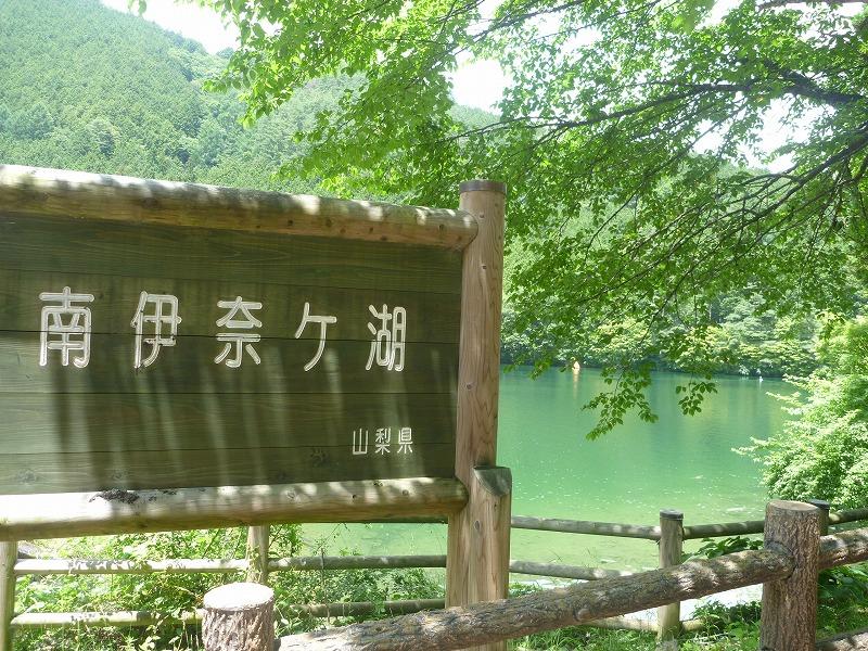 140712櫛形山 (118)