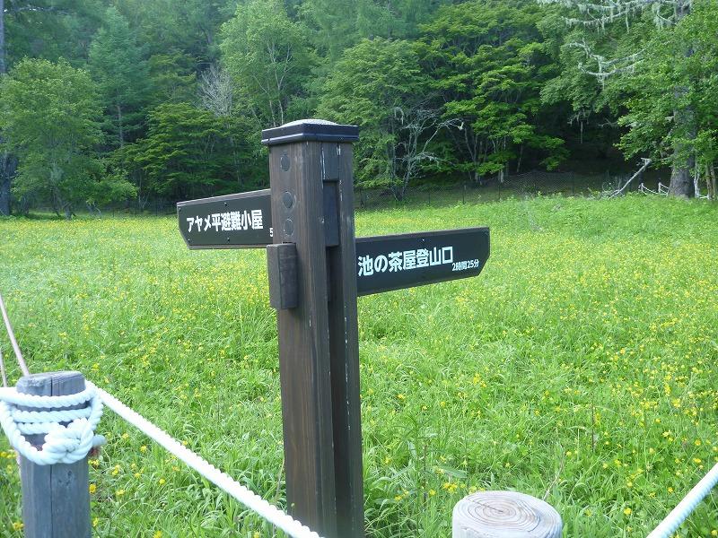 140712櫛形山 (49)