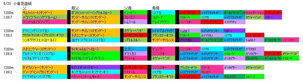 8/23小倉芝血統