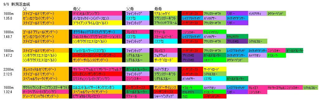 9/6新潟芝血統
