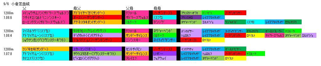 9/6小倉芝血統