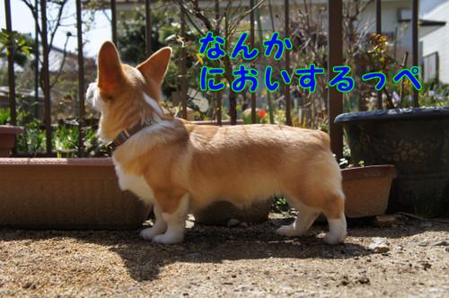 014_new