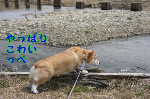 028_new