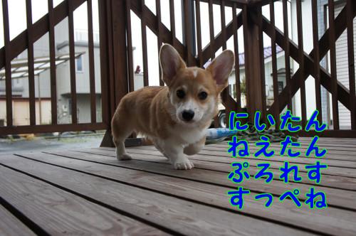 018_new