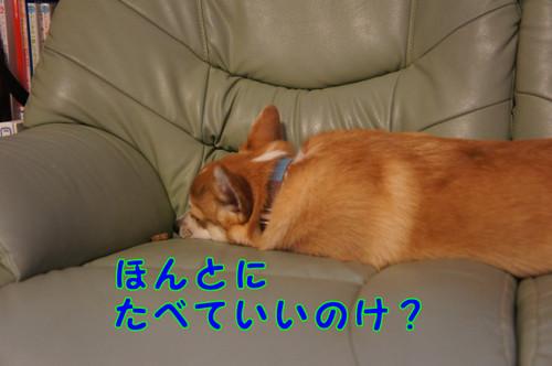 025_new