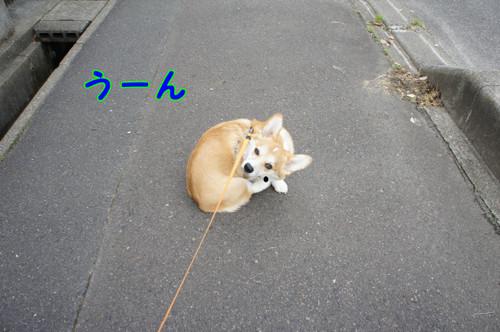 001_new