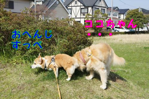 013_new_2
