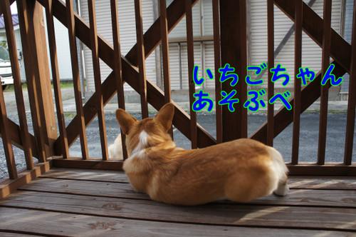 028_new_3