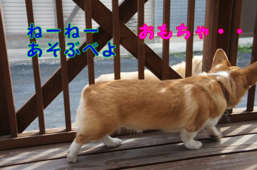 032_new