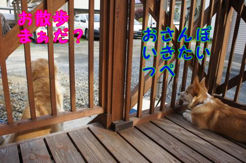 040_new_2