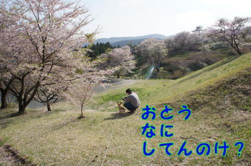 011_new