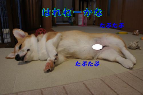 022_new